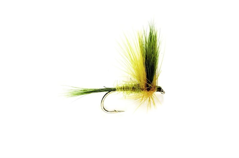 Fulling Mill BH Golden Olive Wulff